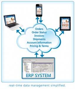 Ecommerce with ERP integration