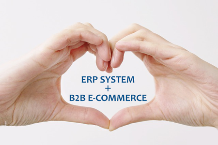 ERP and E-commerce Integration